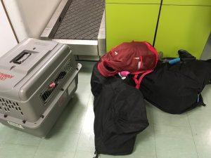 Et voilà, tout est là : 2 sacs à dos, nos 2 sacs de voyage d'environ 15kg chacun, et la cage de notre Gaminou...Autant vous dire qu'on préfère les voir au sol plutôt que de les porter :)