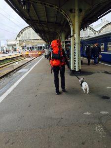 #transsiberien #transsiberian #voyageraveunchien #travel #travelblog #traveldog #dogtrotter #russia #visitrussia #loverussia #frenchie #dogbagngo #travelwithdog #gaminthefrenchie #dogbagngo #triptranssiberian #train #trainavecchien