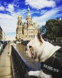 A Saint-Petersbourg, devant la cathédrale Saint-Sauveur sur le Sang Versé