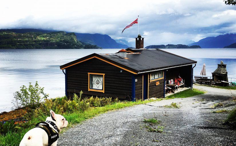 📍🇳🇴 Gamin est en Norvège